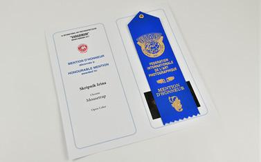 award_skripnik_s_0048